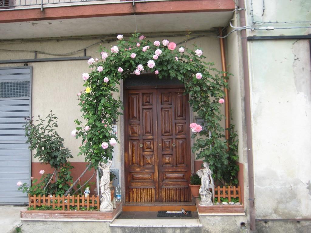 L'arco floreale davanti casa di Cristina e Peppo Palladino