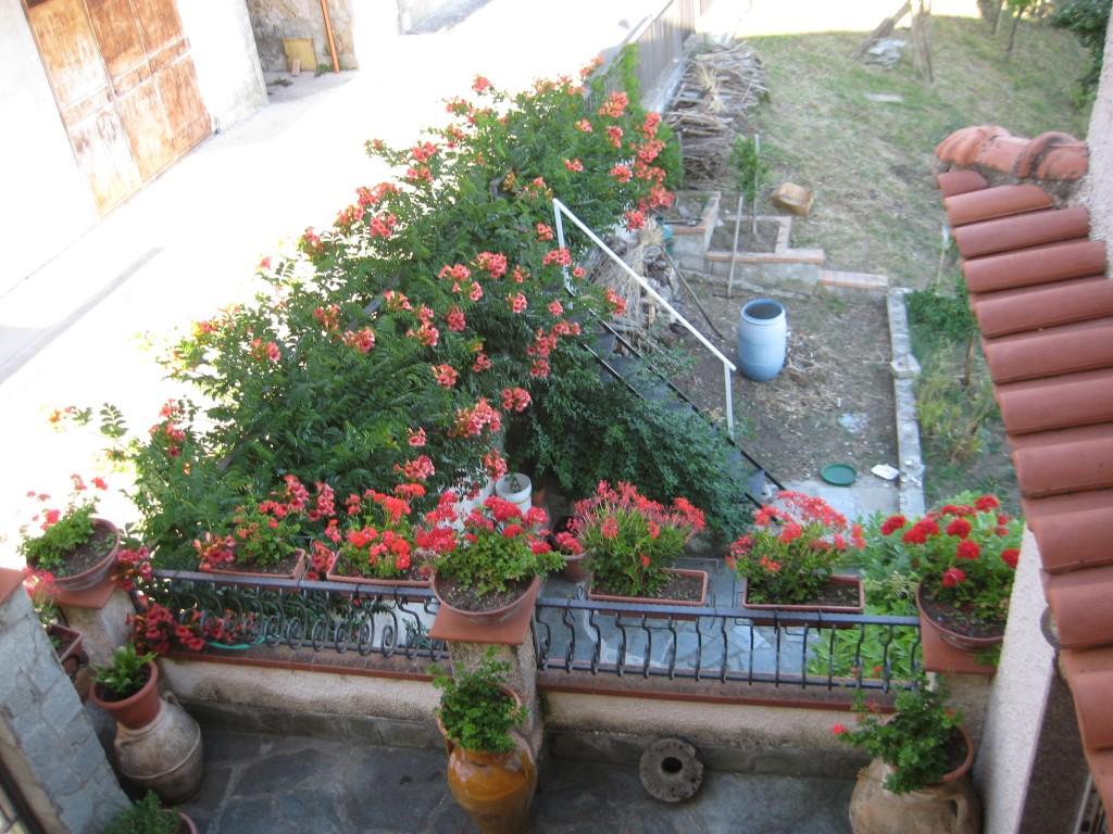 Una vista dall'alto del giardino in fiore di Carmelina Orrico