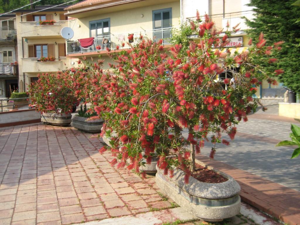 La piazzetta in fiore di Fusco, curata da Eugenia