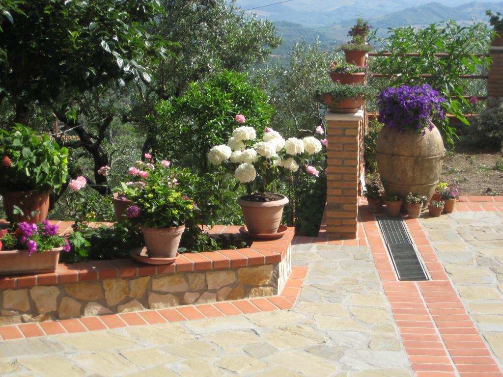 L'angolo suggestivo in fiore nel giardino di Clelia Parrillo