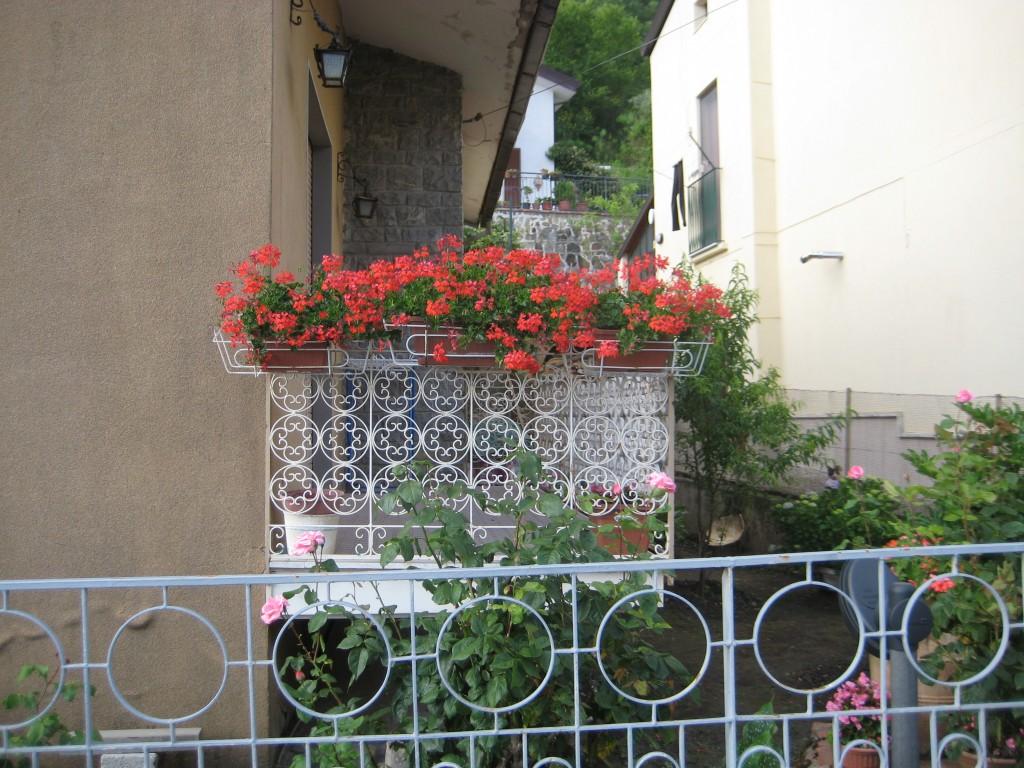 Il balcone fiorito con gerani di Teresa Gargaro