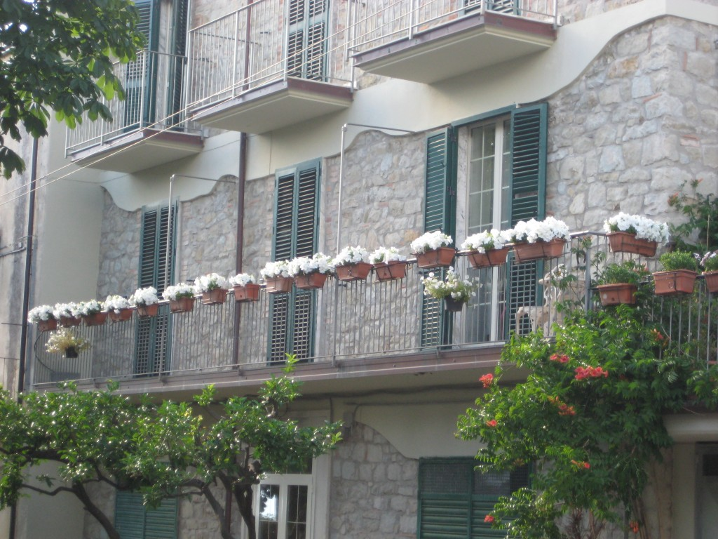 La spettacolare balconata con le petunie in fiore di Immacolata Di Genio