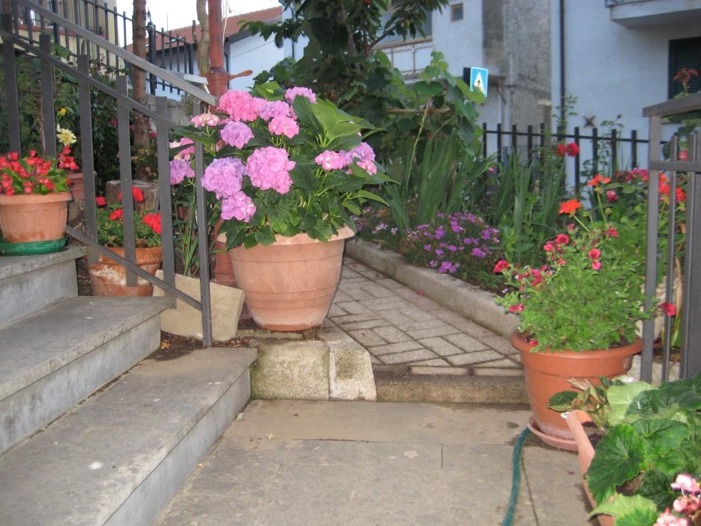 la scalinata fiorita nel giardino di Vera Palladino